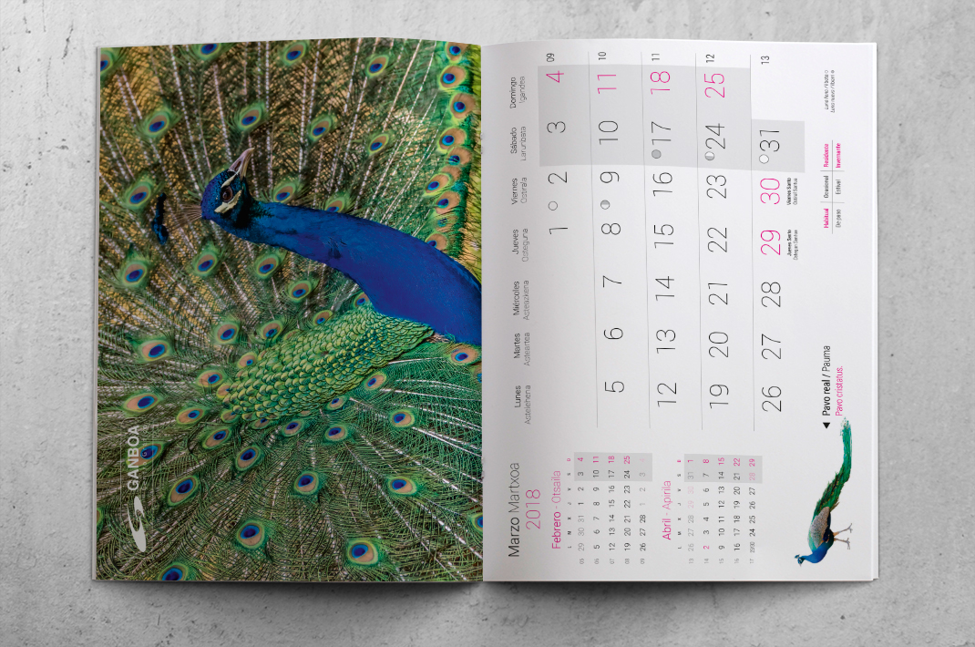 impresion_offset_revista_grapa_calendario