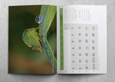Calendario Mural tipo revista